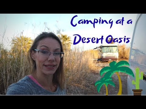 Boondocking At A Desert Oasis In Yuma, AZ - Sprinter Van Adventures