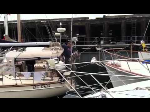 Unloading Dockwise ship