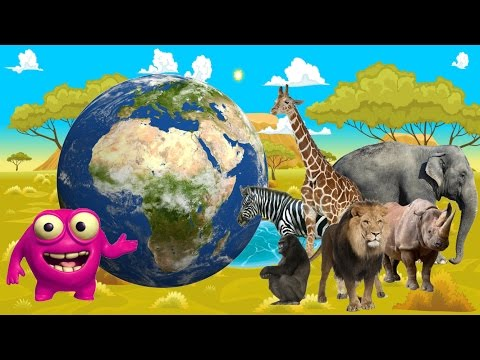 Kids Learn Jungle Animals | African Wildlife Comes Alive | Mighty Morphin' Learning