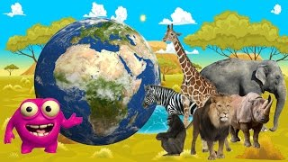 Kids Learn Jungle Animals | African Wildlife Comes Alive | Mighty Morphin