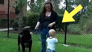 Mom Had No Idea She Hired A Monster, Until The Family Dog Started Acting Strangely