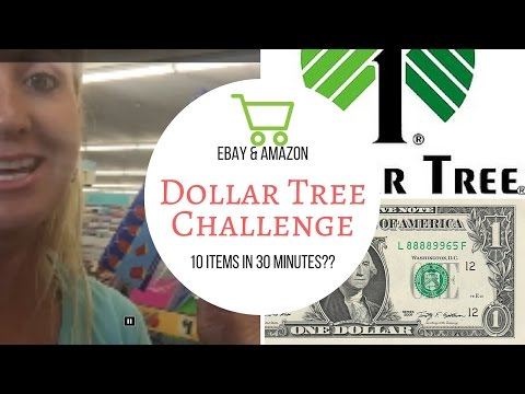 Dollar Tree Challenge | Can I find 10 profitable items to sell on ebay and amazon in 30 minutes?