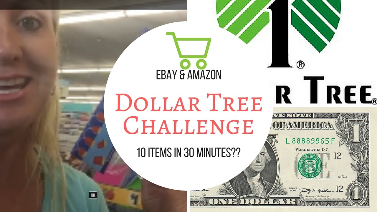 Dollar tree challenge can i find 10 profitable items to sell on dollar tree challenge can i find 10 profitable items to sell on ebay and amazon in 30 minutes izmirmasajfo