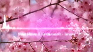 Download Shawn Mendes ft. Camila Cabela - Senorita