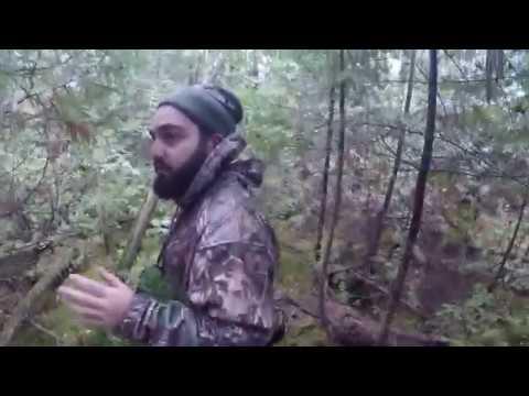 Ontario Rabbit Hunting