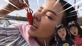 마녀들의 곤충사냥! 곤충사냥 곤충채집 거미 거미잡기 spider 곤충으로 만든 마녀들의 무적풍선 마법풍선pretend play WITH INSECT for kids