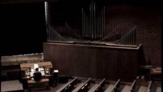Pipe Organ - Grunty