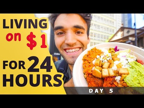 LIVING on $1 for 24 HOURS in NYC! (Day #5)