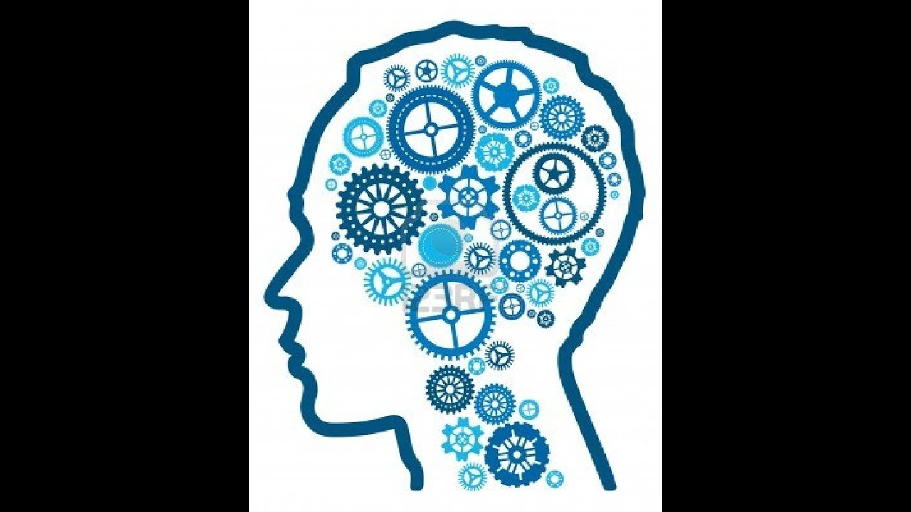 Books on IQ and Human Intelligence