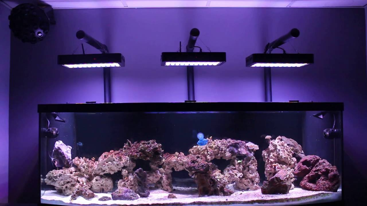 Man cave reef led evergrow aquarium light diy mounting kit youtube man cave reef led evergrow aquarium light diy mounting kit solutioingenieria Gallery