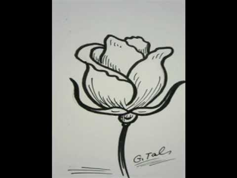 Simple Line Art Rose : Pretty simple flowers to draw