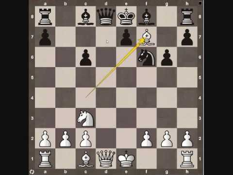 Chess Tactics: Decoy