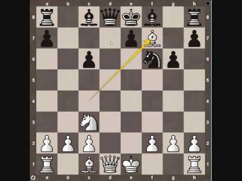 Chess Tactics: Decoy