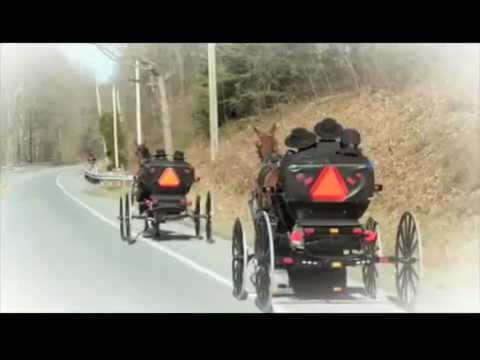 Plain Jayne trailer Mp3
