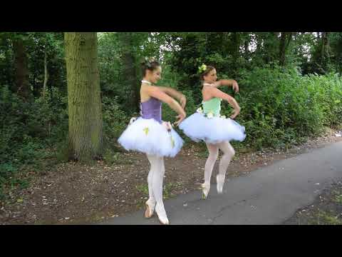 Four seasons ballerinas