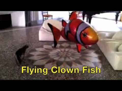 Air Rangers - Flying Shark And Fish