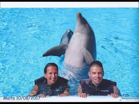Delfinúszás @ Málta 2017.08.10 Mediterraneo Marine Park