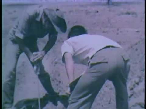 Staff Film Report 66-18A (1966)