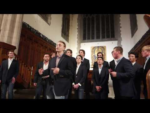 New York, I Love You But You're Bringing Me Down (A Cappella) - The Trinity College Accidentals