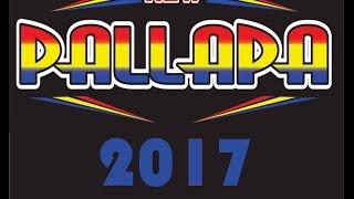 30 menit bersama new palapa 2017