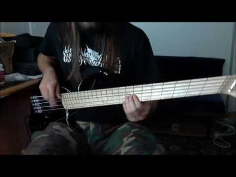 Reel Big Fish - Take On Me (Bass Cover)