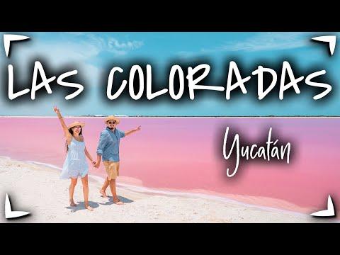 Las Coloradas YUCATAN y Rio Lagartos 🔴 GUIA COMPLETA ► Que hacer, precios, hospedaje 🟡 Vale la PENA?