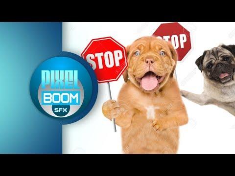 2-hrs-anti-dog-ultrasonic-sound-stop-dog-barking-bark-control-keep-a-dog-out-of-garden