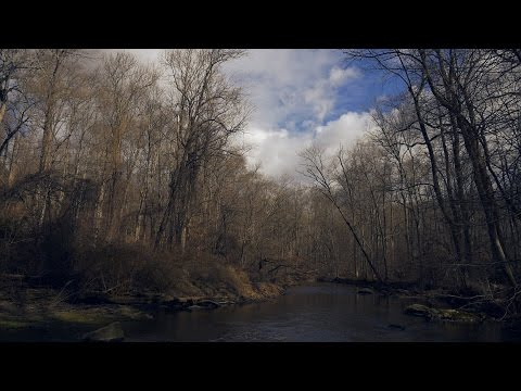 Relaxing Nature Journey 26 ( Winter 2017 / Ridley Creek State Park )