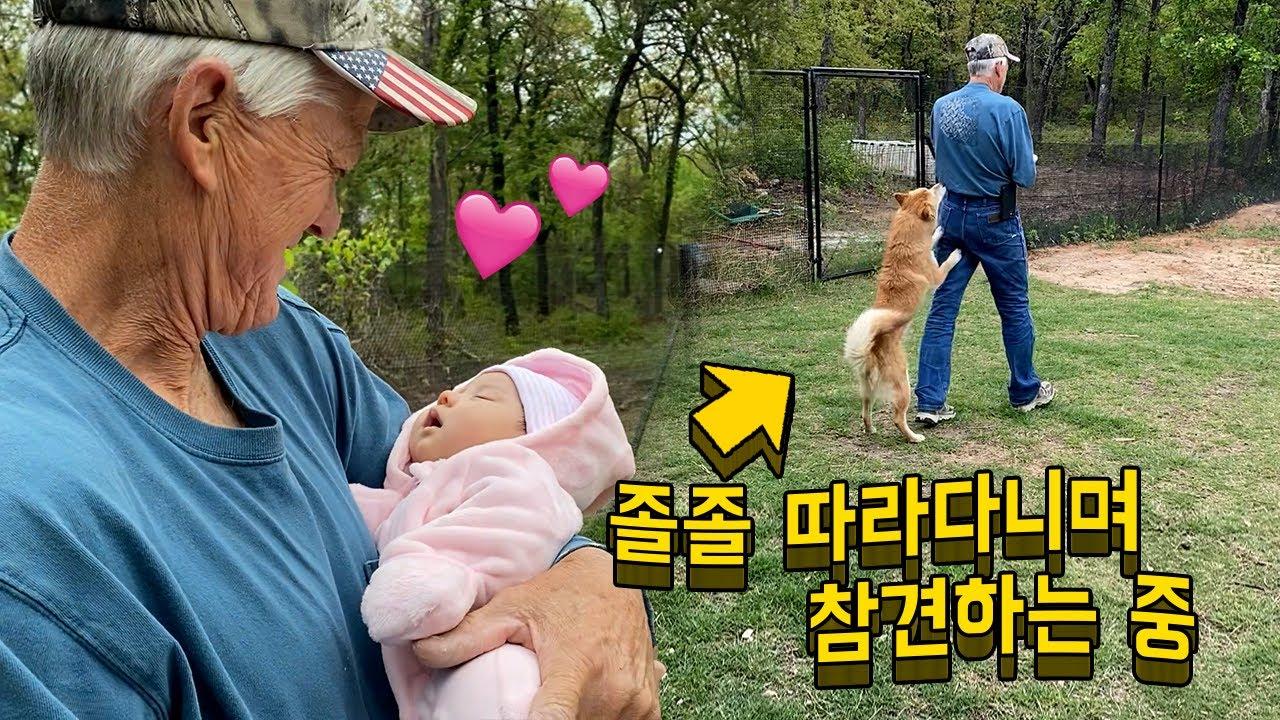 손녀에게 푹 빠진 할아버지와 아픈 아기가 걱정되는 진돗개