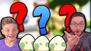 RANDOMIZER EGGLOCKE?!   Pokemon X & Y Randomizer Egglocke Co-Op   Part 1