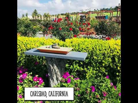 Carlsbad's unique wedding destination