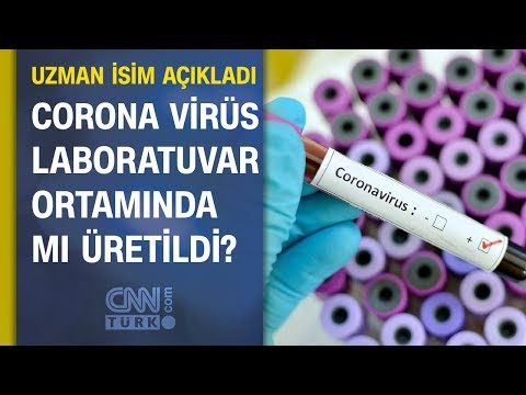 Corona (Korona) virüs laboratuvarda mı üretildi? Uzman isim canlı yayında açıkladı