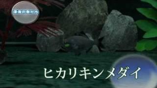 [Trailer] My Aquarium 2 - JP Version