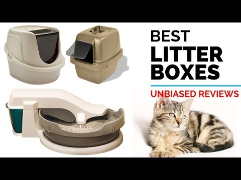 10 Best Litter Boxes 2019 | Handpicked - Top Litter Box Reviews & Ranking