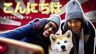 TSL Travels: Ra Met The Love Of Her Life In Akita, Japan