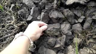 Oil Spill 05 08 2016