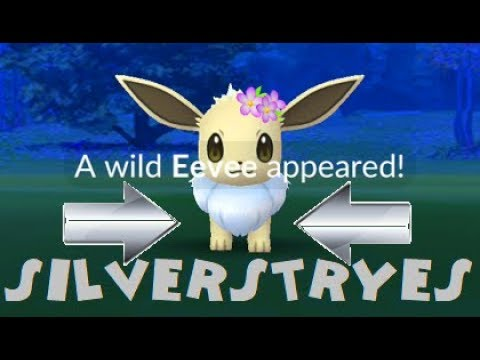 Pokemon Go Shiny Flower Crown Eevee Catch After 15 Tries