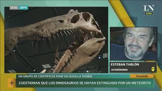 Cuestionan que los dinosaurios se hayan extinguido por un meteorito | +INFO por LN+