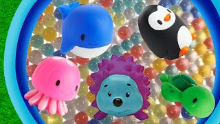 Learn Zoo Animals Names Education For Kids Toys in Water Beads Whale, Penguin, Jellyfish, Hedgehog