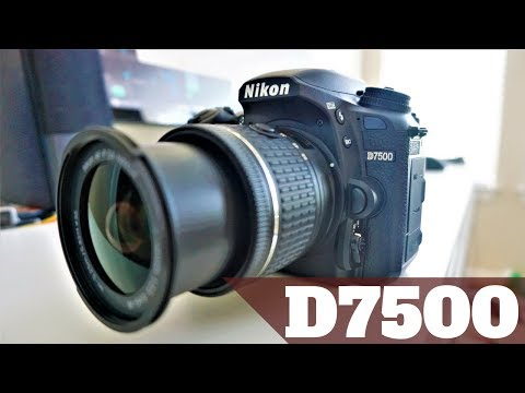 Nikon D7500 Hands On Review | Live View Auto Focus + High Speed Continuous Shooting + Overview