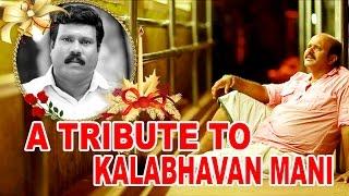 Minnaminunge Minnum Minunge | A Tribute To Kalabhavan Mani
