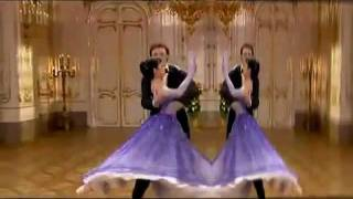 BEAUTIFUL BLUE DANUBE!.avi