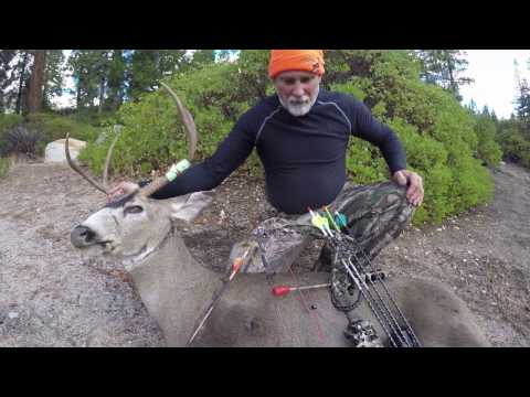Beautiful Buck D6 Hunting