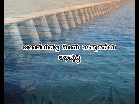 Enhancement of fish production in Reservoirs- ಜಲಾಶಯದಲ್ಲಿ ಮೀನು ಉತ್ಪಾದನೆಯ ಅಭಿವೃದ್ಧಿ