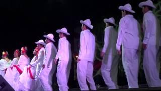 Estampas Jarochas - Baile regional Veracruzano