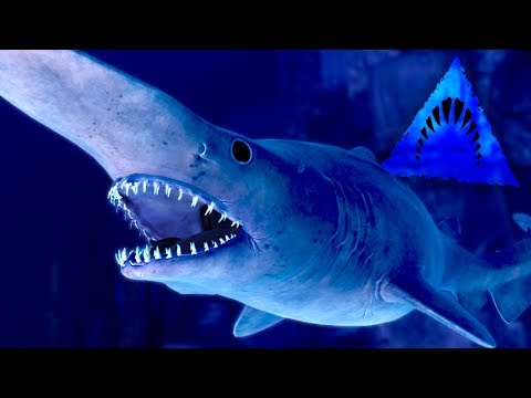 THE GOBLIN SHARK UNLOCKED!!! - Depth | Ep16 HD