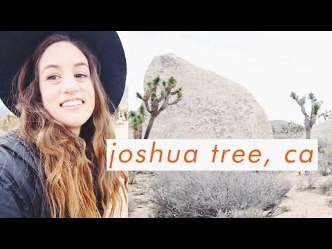 Travel VLOG | Exploring Joshua Tree and the Salton Sea