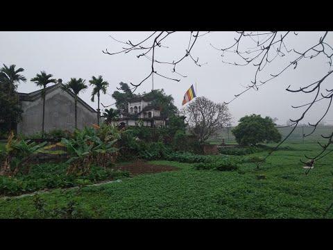 Phong cảnh làng quê Bắc Bộ Việt Nam. Phần 1.Vietnam village.