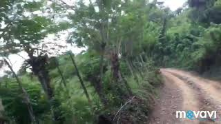Доминикана. Экскурсия на остров Самана.