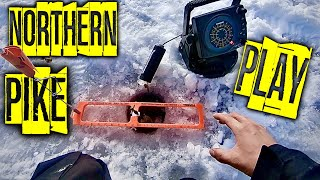 Northern Pike Slam Finding Pike Ice Fishing on a New Lake Pt 2